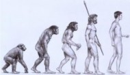 Creationism Camouflage: Ohio School Board Mulls Policy To Counter 'Controversial' Evolution