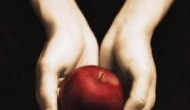 Why Evangelicals Should Love Twilight
